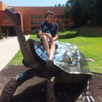 Here's the famous Museum School turtle outside. It's made of recycled auto materials.