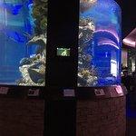 Photo of Nais Aquarium Restaurant