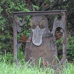 Platypus walk by the side of the house