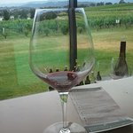 Photo of Oakridge Wines