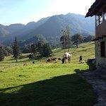 Foto de Hacienda San Antonio