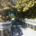 Board walk leading to rest rooms