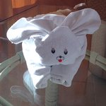 Nice towel bunny in the room when we arrived