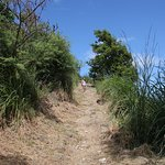 Pigeon Island National Park Foto