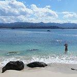Isle Coral