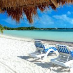 Tranquil Turtle Beach Bar