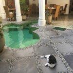 Casa Verde Hotel Foto