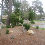 View from Kitchen Table Area, , Best Western, Pacific Grove, Ca