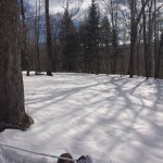Enjoyed our day of snowshoe trail walking! Great for beginners or experienced cross country skii