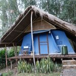Foto de Eco-Omo Lodge