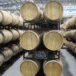 Wine fermenting in wodden barrels