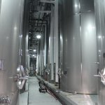 Wine fermenting in Stainless Steel