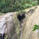Photo de Gozalandia Waterfall