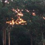 Karrak Reach Forest Retreat Foto
