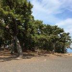 Photo de Miho Seacoast (Miho no Matsubara Beach)
