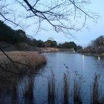 Photo of Meijo Park