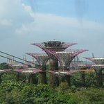 Photo of Gardens by the Bay