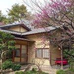 Tea House Omean