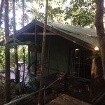 Foto de Treetops Montville