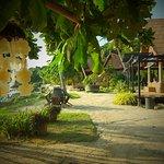 Photo of Chills Resort