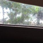 État de la robinetterie et propreté de la fenêtre dans la chambre Rimlay 2...