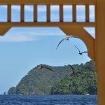Photo de Maracas Bay