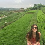 Bit of a drive but totally worth spending a day in the lush green rice terrace.