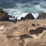 Photo of La Jolla Cove