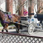 Arrange a carriage ride