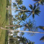 Grand Paradise Samana Foto