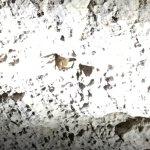 Longhorn Cavern State Park