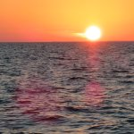 "Sunset Sail on the Sailing Catamaran ""Sirius"" in Marathon FL"