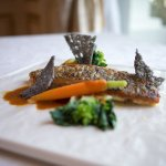 Pan Fried Red Snapper Fillet