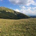 Photo de Monte Catria - Cotaline 1400