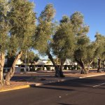 Foto di Hyatt Place Scottsdale/Old Town