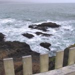 Pigeon Point Lighthouse - View over fench on pathway