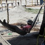 Time to sit in a hammock after lunch