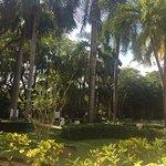 Photo of Paradisus Punta Cana