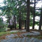 Escalinata desde el hotel hasta el lago, visuales y aromas increíbles del bosque
