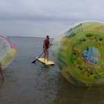 cocoon, SUP , zorb roller