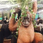 Photo of Gorilla Theme Pub