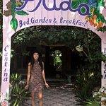 صورة فوتوغرافية لـ El Jardin de Frida , Restaurante
