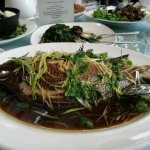 Steamed Morwong - Fish