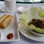 Spring Rolls and San Chow Bow