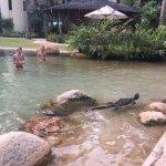 Foto de Tanjung Rhu Resort