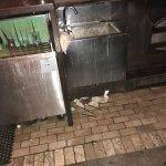 Photo of Dubh Linn Gate Irish Pub