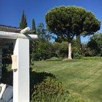 Foto di Vila Monte Farm House