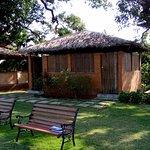 Devaaya Ayurveda & Nature cure Centre Foto