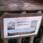 Osaka Prefecture Parks Foto