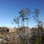 Comfort Suites Raleigh Durham Airport/RTP Foto